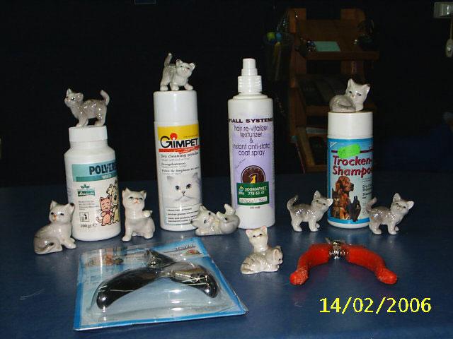Как ухаживать за котенком Приданое - Румфолд